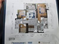 华丽雅苑 宝龙广场附近 开发商实力雄厚 楼层户型可选 找我额外优惠8个点子
