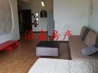 二桥片区 滨江华城电梯 两三精装修 带家具家电 拎包入住