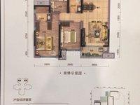碧桂园 天玺4室2厅2卫电梯大户型