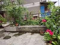 抢抢抢,2楼带平台,稀缺房源,养老喜欢花花草草的你的不二选择。